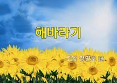 [낭독낭송시 066] 해바라기 / 정민호 詩