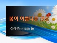 [낭독낭송시 065] 봄이 아름다운 것은 / 이상윤 詩