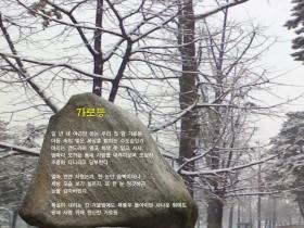 [사이버시비] 가로등 / 김국이