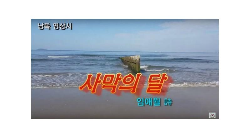 [낭독낭송시 041] 사막의 달 / 임애월(계간 '한국시학' 등단) 시